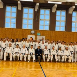 Taekwondo tehniline seminar