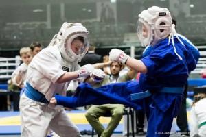 Martial Arts games